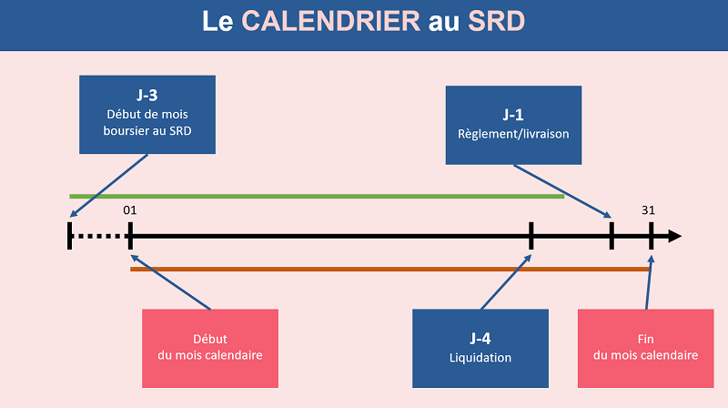 Le calendrier du SRD